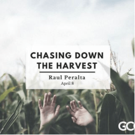 Chasing Down the Harvest