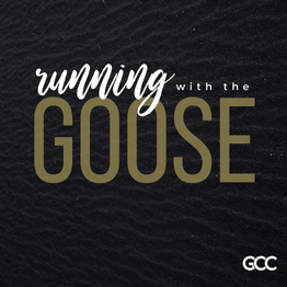 Running with the Goose Pt. 1