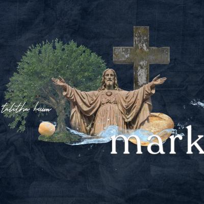 Mark : Week 4
